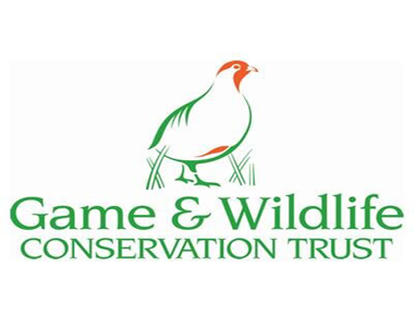 gwct-scottish-game-fair
