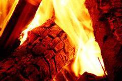Log Burner Flame